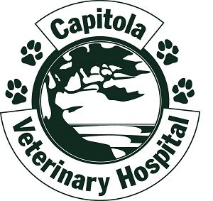 Capitola Veterinary Hospital